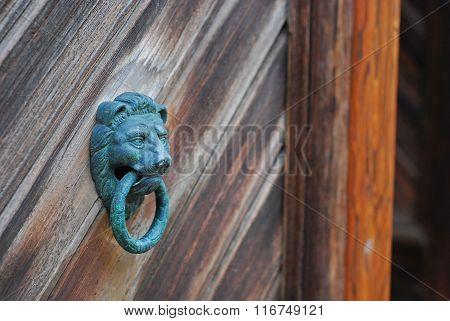 lion doorhandle on wooden door