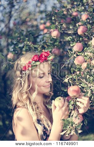 Close up on pretty young apple fairy with three fruits