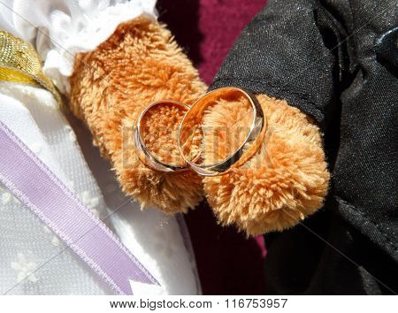 Golden Wedding Rings In Toy Bears Paws