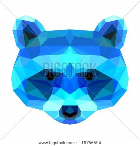 Abstract Polygonal Geometric Triangle Bright Raccoon Portrait Isolated On White