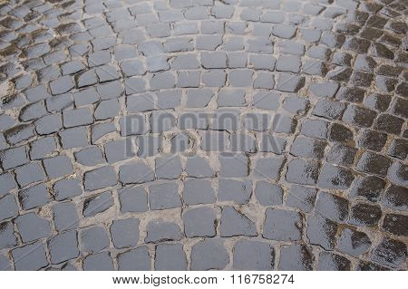 Fragment Of Stone-paved Road