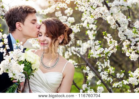 Groom Kisses The Bride On A Background Of Blooming Trees
