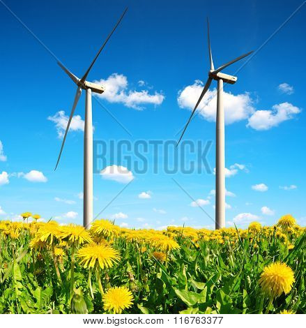 Field of dandelions with wind turbines. Clean energy.