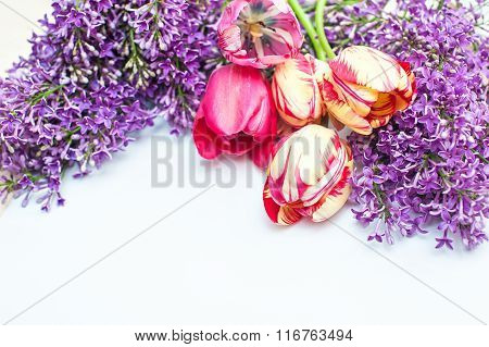 Bouquet Of Tulips And Lilac On A White Background