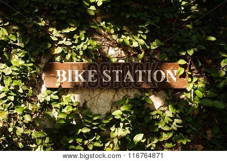 Bike Station Sign Green Leafs Around