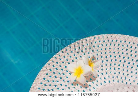 Two Plumeria Flower On The Hat