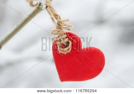 Red Heart Hanging On Snowy Tree Brunch In Winter