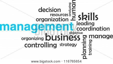 Word Cloud - Management