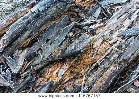old wooden sufrace with frost - abstract background