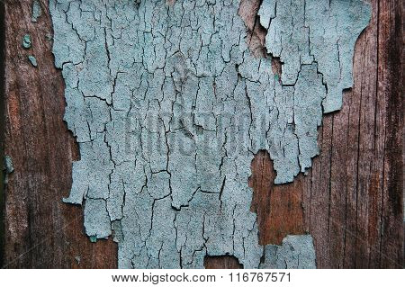 Cracked paint on a wooden wall.