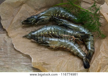 Fresh Raw Black Tiger Prawns On Paper On A Rustic Wooden Board, Dill Garnish, Copy Space