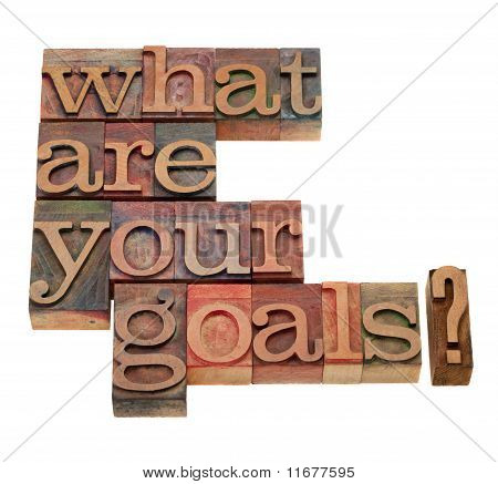 What Are Your Goals Question