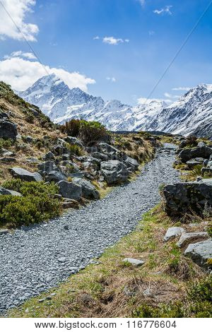 Hiking path to Mount Cook, New Zealand