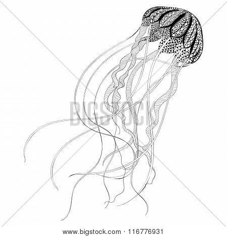 Zentangle stylized black Jellyfish. Hand Drawn vector illustrati