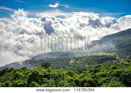 The Green Valley Beneath The Volcanoes, Cerro Verde National Park, El Salvador