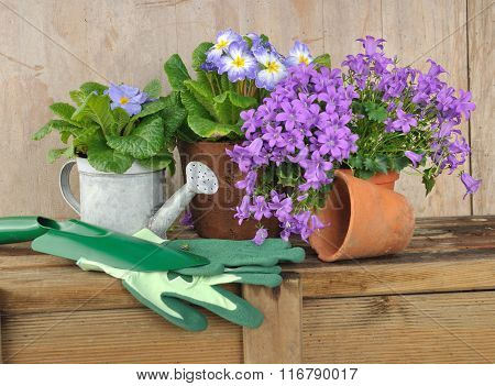 Flower And Gardening Accessories