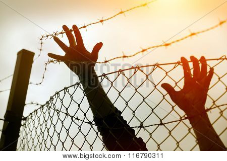Refugee men and fence. Refugee concept