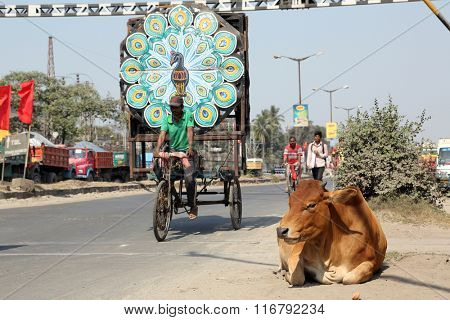 KOLKATA, INDIA - FEBRUARY 09: Cow resting on a busy street in Kolkata, West Bengal, India, on February 09, 2014