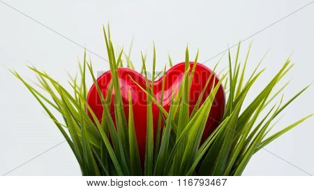 Red Heart Lying In The Grass For St. Valentines Day