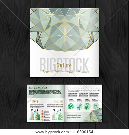 Pastels with gold geometric shapes brochure. Color application booklet template design for corporate identity with statistics and infographics. Cover layout and infographics. Business stationery.