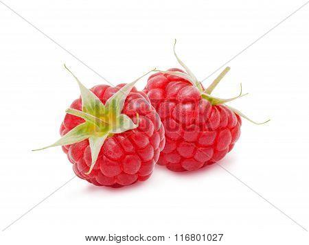 Two fresh raspberries