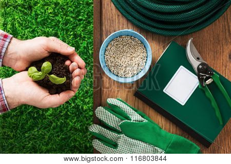 Farmer's Hand With Basil Sprout