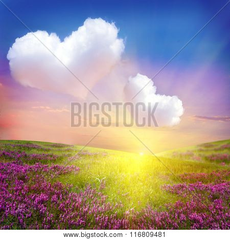 Flower  meadow with heart clouds