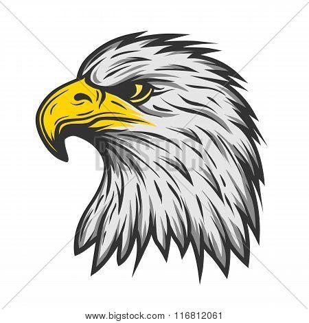 Proud eagle head. Color version.