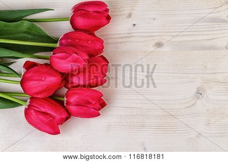 Tulips Red on light wooden background text space