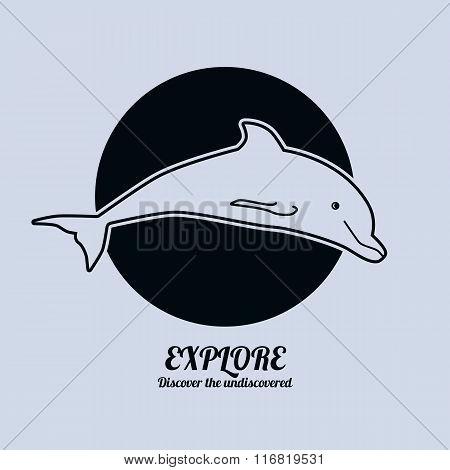 Illustration of a dolphin. Minimalist vector illustration.
