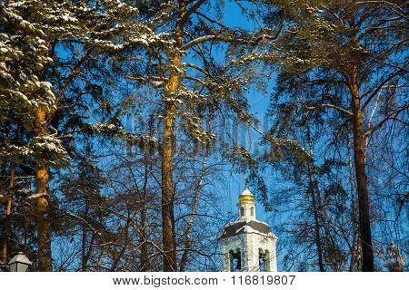 Trees and church in winter on a clear day in the park Tsaritsyno