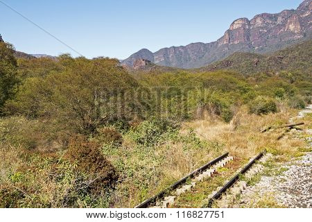 Old Rail Track In Sierra Madre Mountains