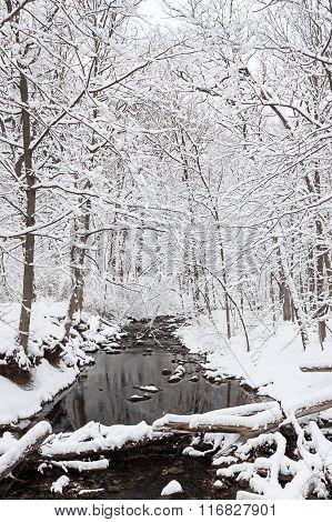 Winterland River