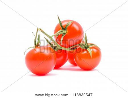 The Cherry Tomatoes On A Branch