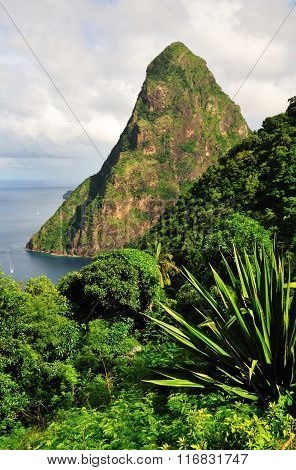 Green Hill Over Piton