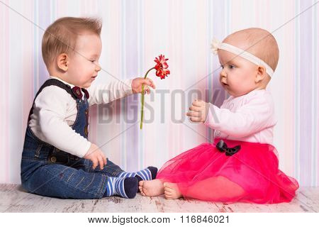 Baby boy giving a flower to the girl on valentines day