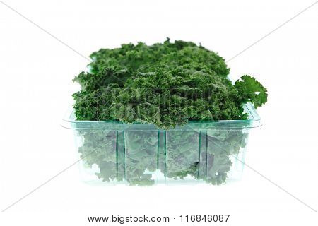 fresh raw green kale packed in plastic box ready to sell isolated over white background