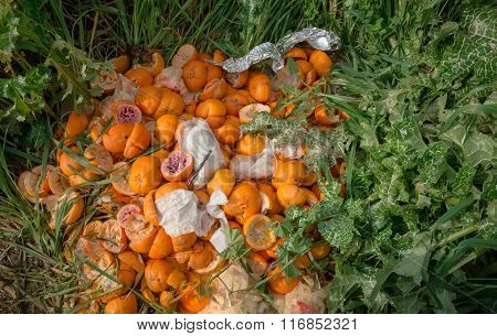 Pile Of Bright Freshly Squeezed Orange Rinds Thrown Outdoor On Green Vegetation