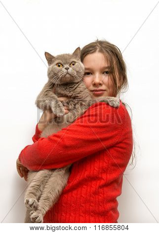 Girl with a scottish cat in her arms on a white background