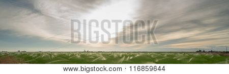 Sun Warms Agricultural Field Farm Crop Irrigation Sprinklers