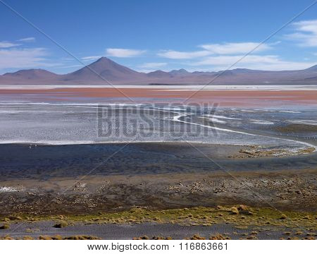 Laguna Colorada In Bolivian Altiplano With Flamingos