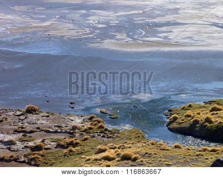 High Altiplano Sulphuric Lake In Bolivia