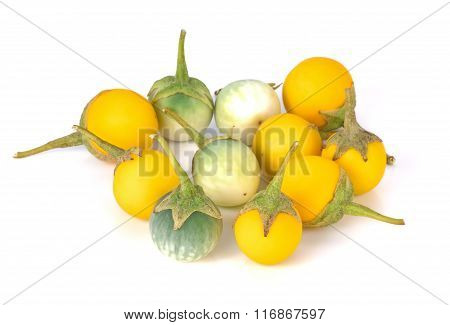 Solanum On White Background