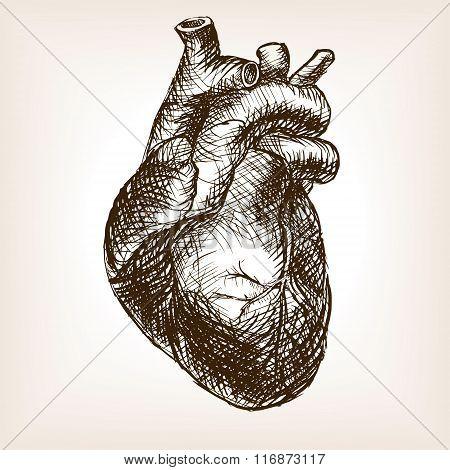 Human heart sketch style vector illustration