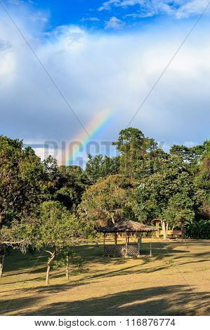 rainbow in forest, san augustin, national park, latin america