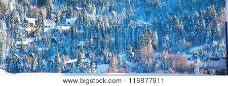 Beautiful winter landscape with snow covered trees, village houses, countryside