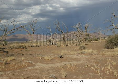 Approaching Storm In The Desert