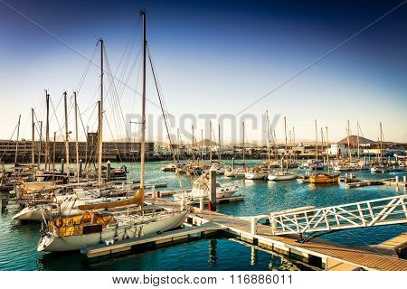 yachts in bay near a city in evening