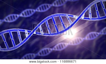 human genes or DNA