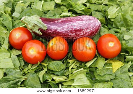 spinach and tomatoes